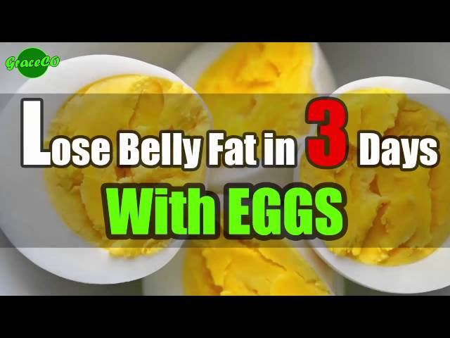 Quickest Way To Lose Belly Fat At Home In 3 Days With Eggs Body Tips